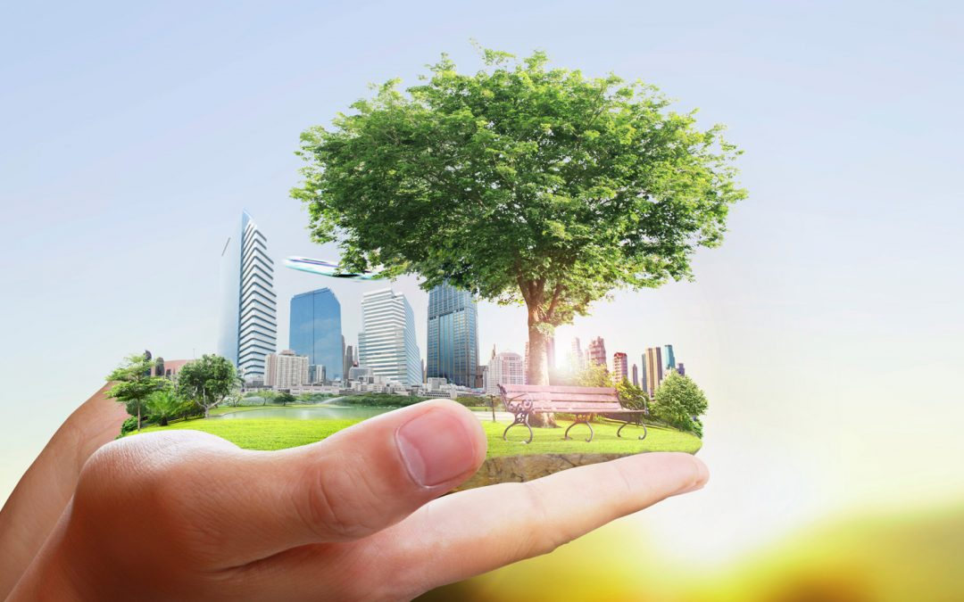 "【Skyline】一起来认识""生命亲和城市""(Biophilic City)"