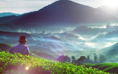 【下班有话题】916 马来西亚日!你喜欢这片土地吗?