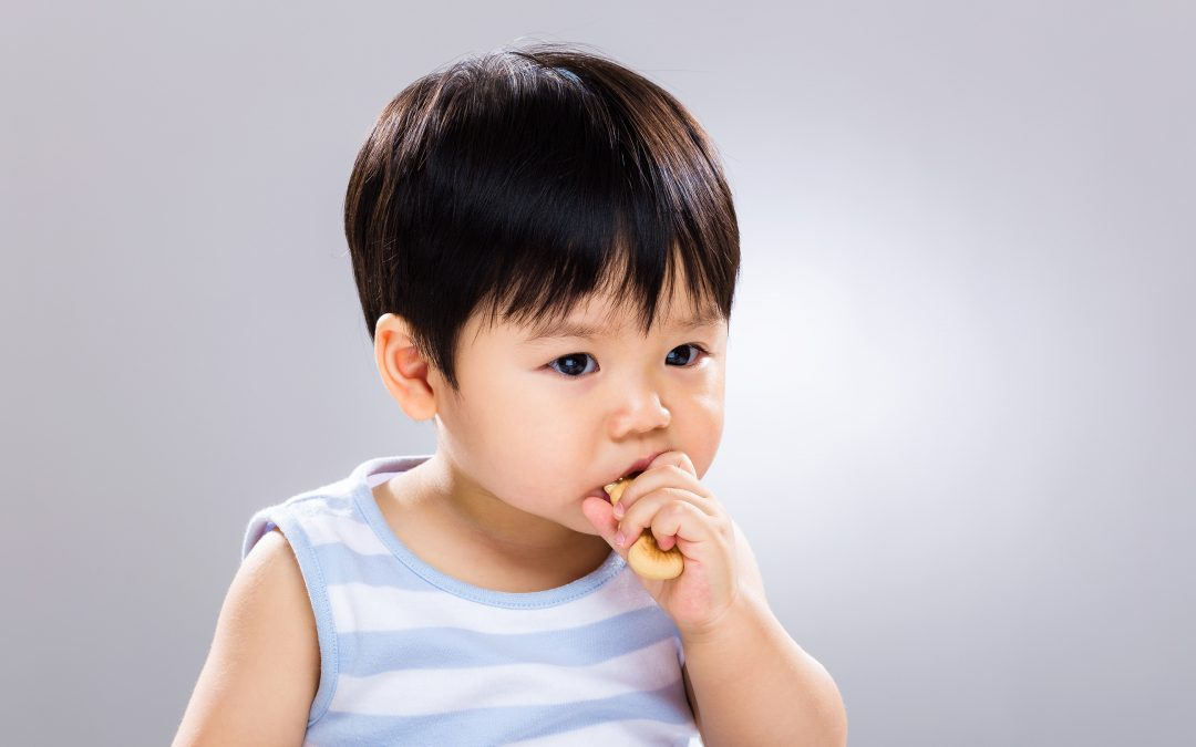 【地球转一圈】孩子吃不够塞饼干可以吗?