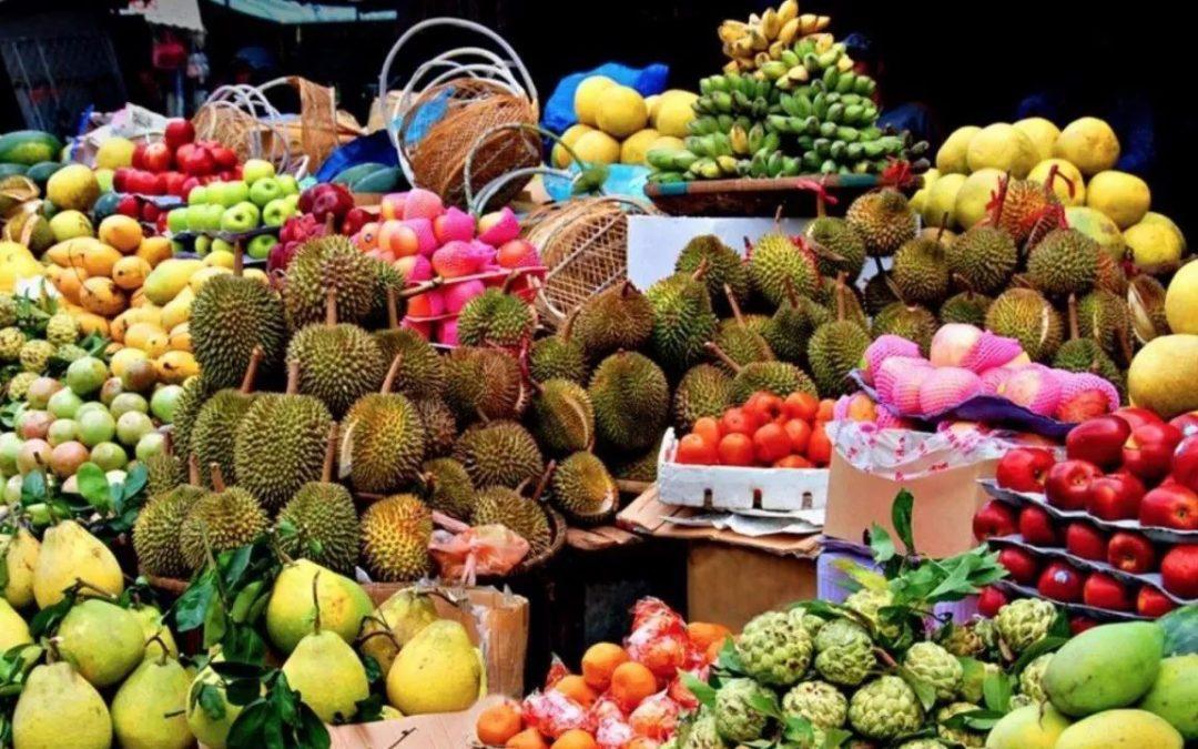 【城市菁英班】将本地水果卖到中国去