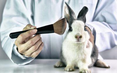 【科技360】你用的外敷内服产品,有经过动物测试吗?