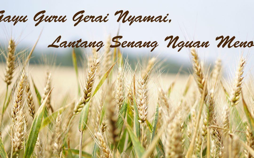 【生活哪里有问题】疫情底下的「Gawai」和「Keamatan」丰收节,如何欢度?
