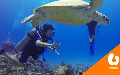 """【财经+】""""亚洲第一生态海洋公园""""就在大马!"""