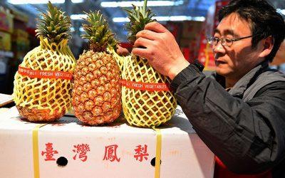 【新闻懒人包】中国禁止台湾凤梨进口