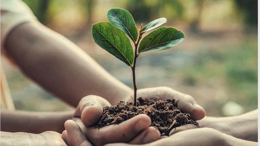 【下班有话题】人类经济与环境如何共存共荣?